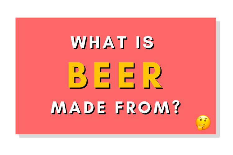 Beer Ingredient Overview: What is beer made from?