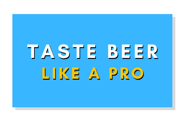 Beer Tasting Overview: Taste Beer Like a Pro